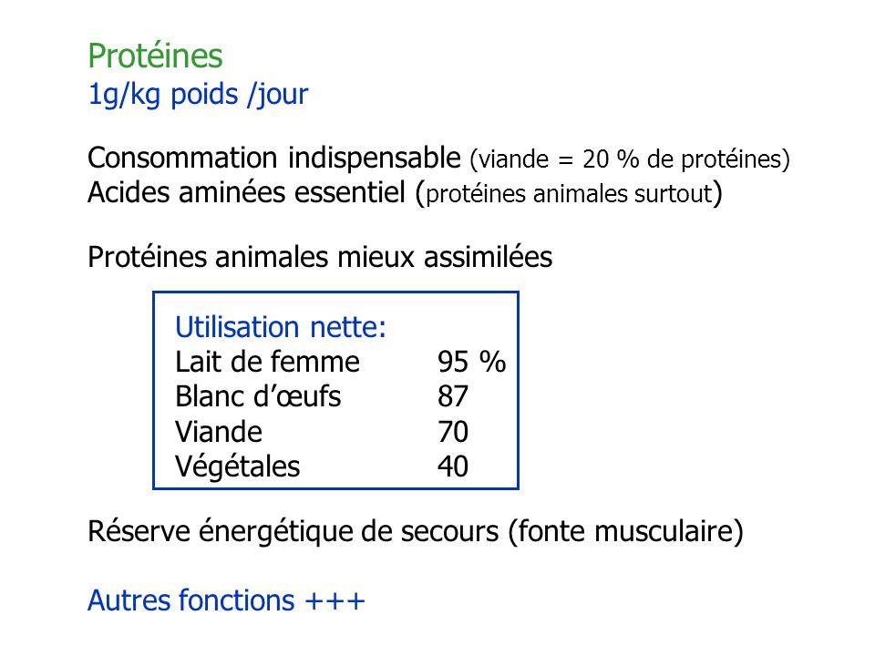 Protéines 1g/kg poids /jour