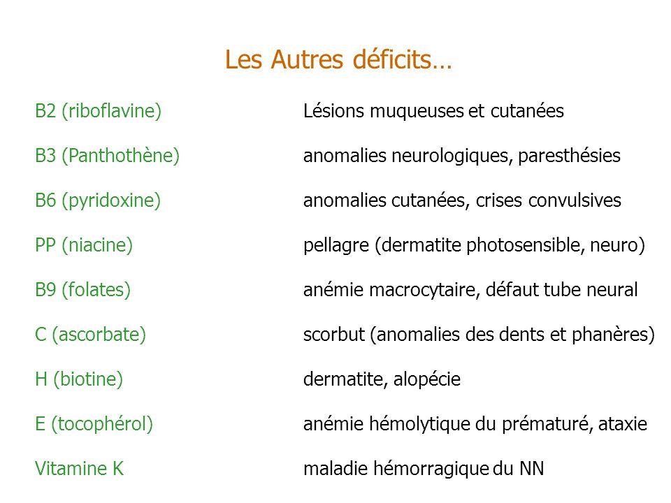 Les Autres déficits… B2 (riboflavine) Lésions muqueuses et cutanées