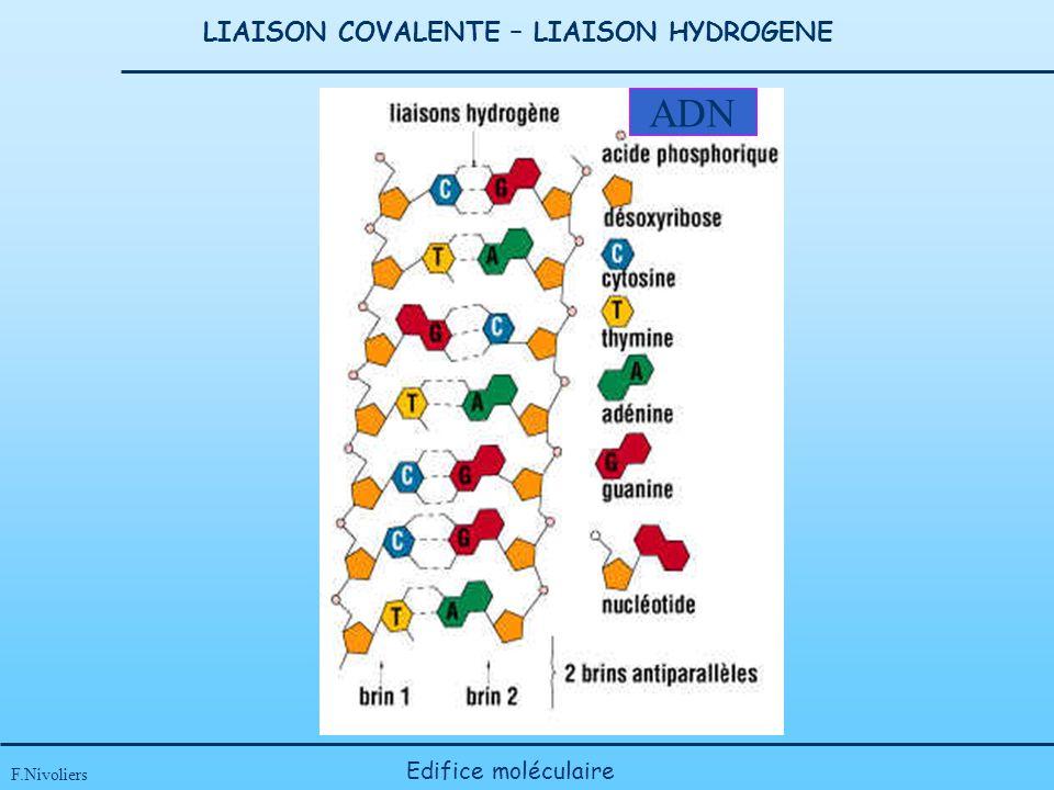 LIAISON COVALENTE – LIAISON HYDROGENE
