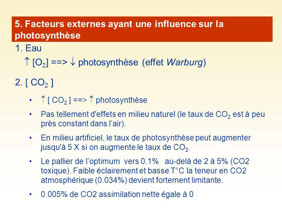 5. Facteurs externes ayant une influence sur la photosynthèse