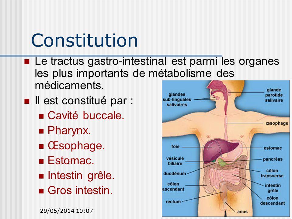 Constitution Le tractus gastro-intestinal est parmi les organes les plus importants de métabolisme des médicaments.
