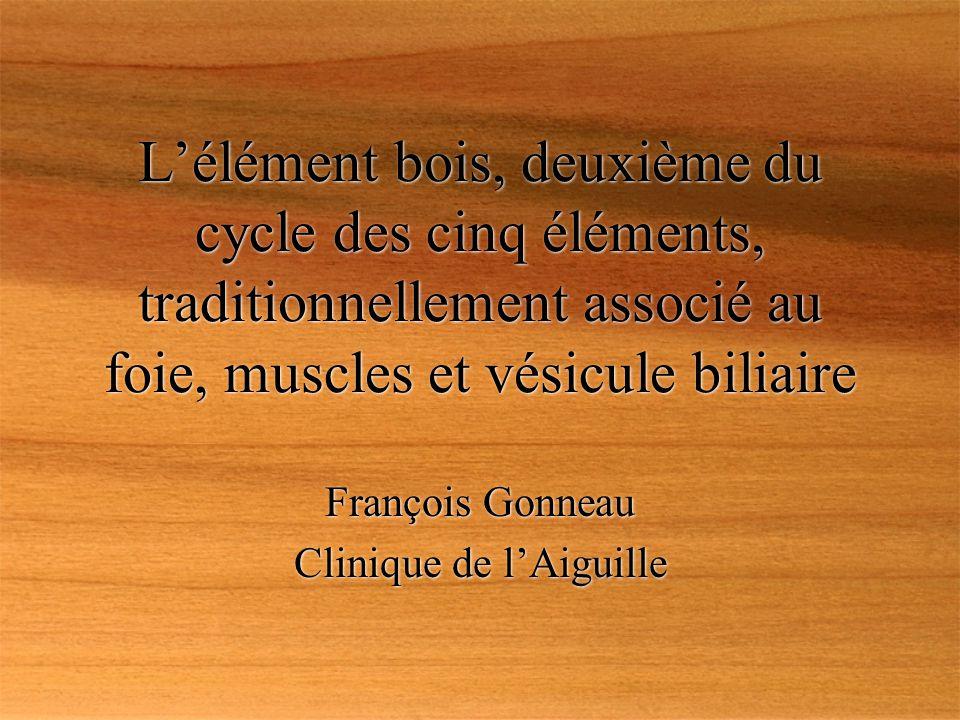 François Gonneau Clinique de l'Aiguille