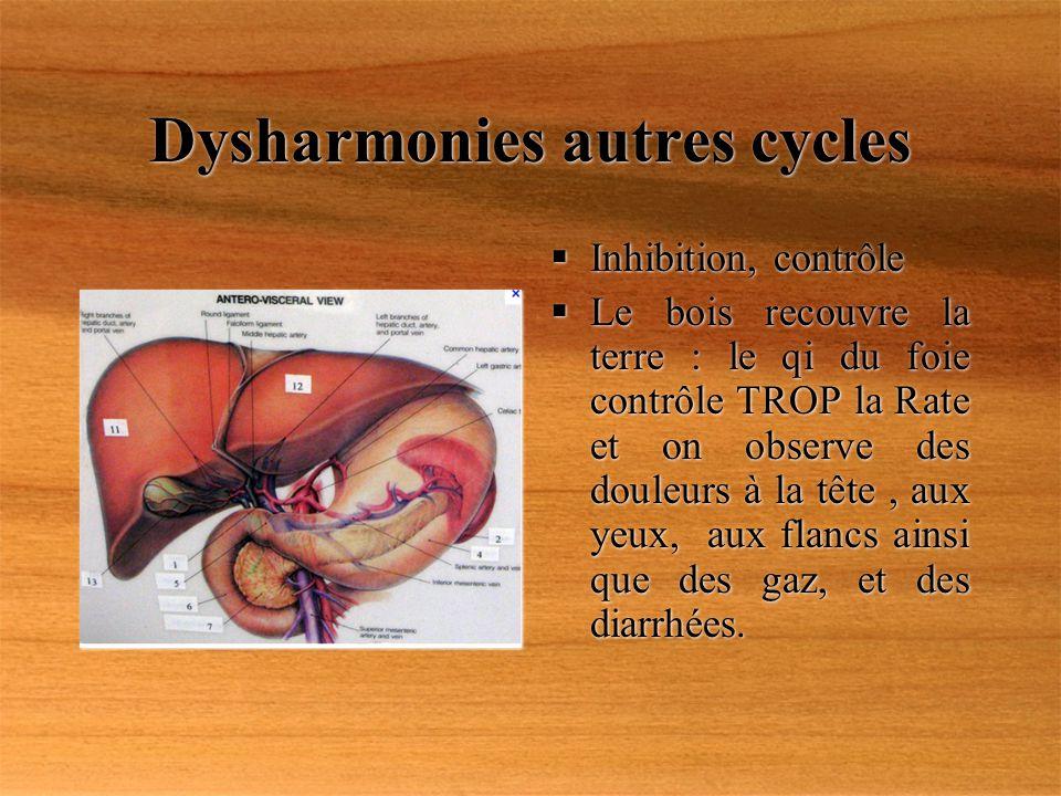 Dysharmonies autres cycles