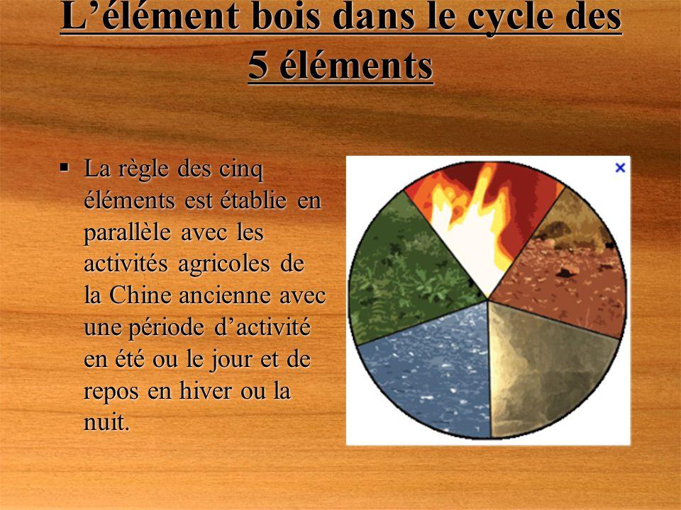 L'élément bois dans le cycle des 5 éléments