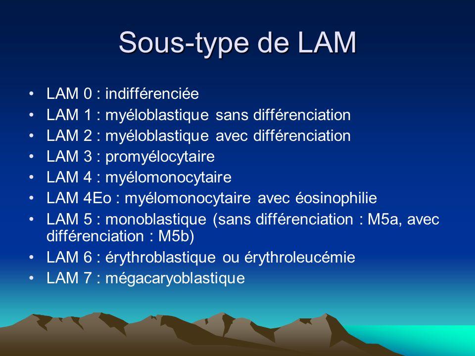 Sous-type de LAM LAM 0 : indifférenciée