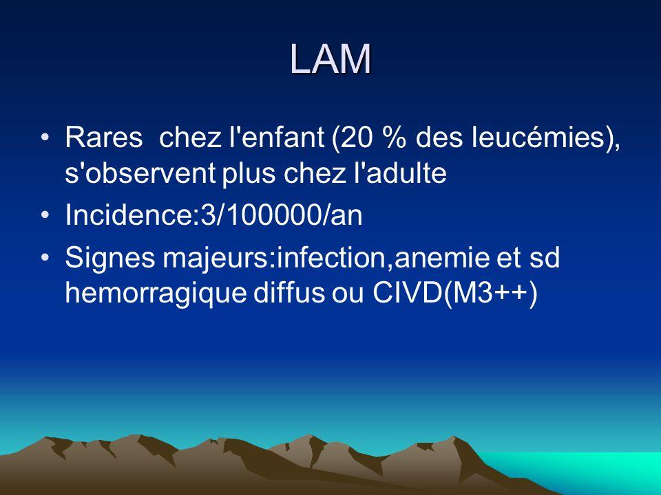 LAM Rares chez l enfant (20 % des leucémies), s observent plus chez l adulte. Incidence:3/100000/an.