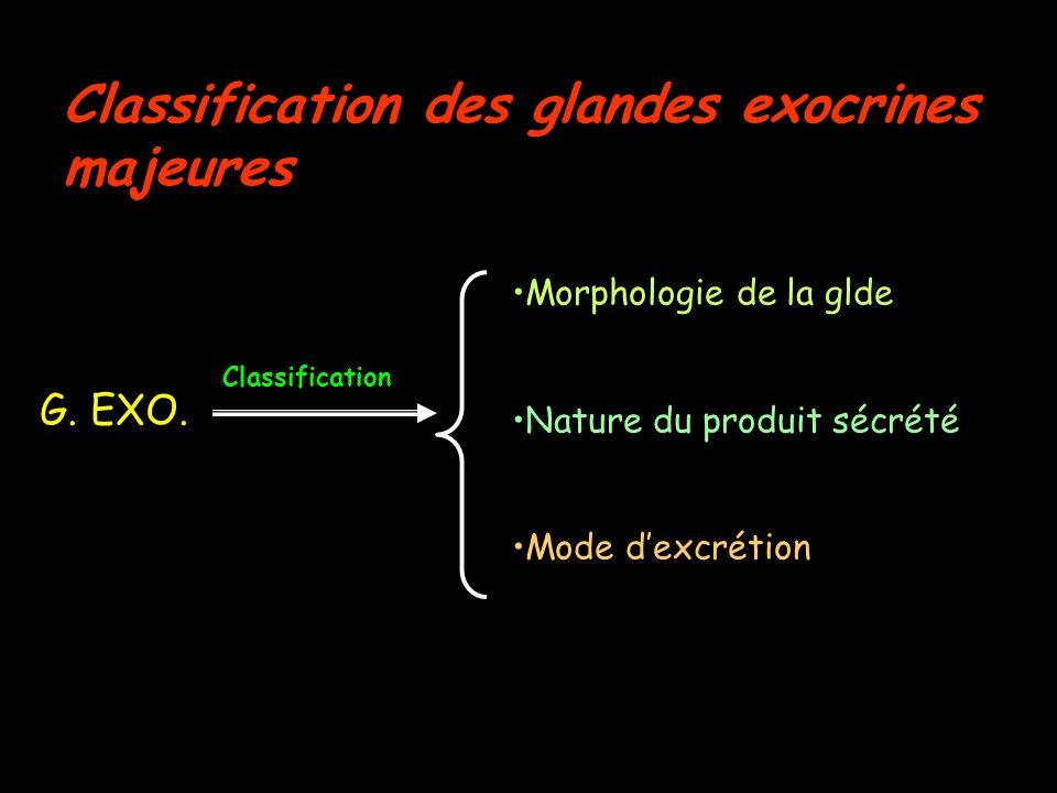 Classification des glandes exocrines majeures