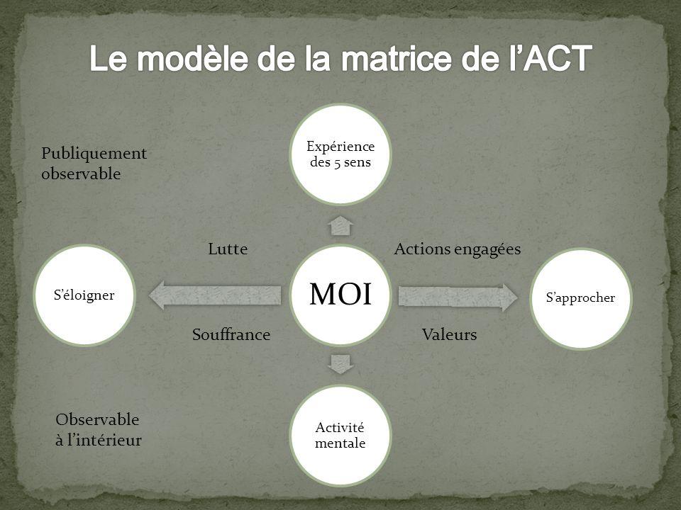 Le modèle de la matrice de l'ACT