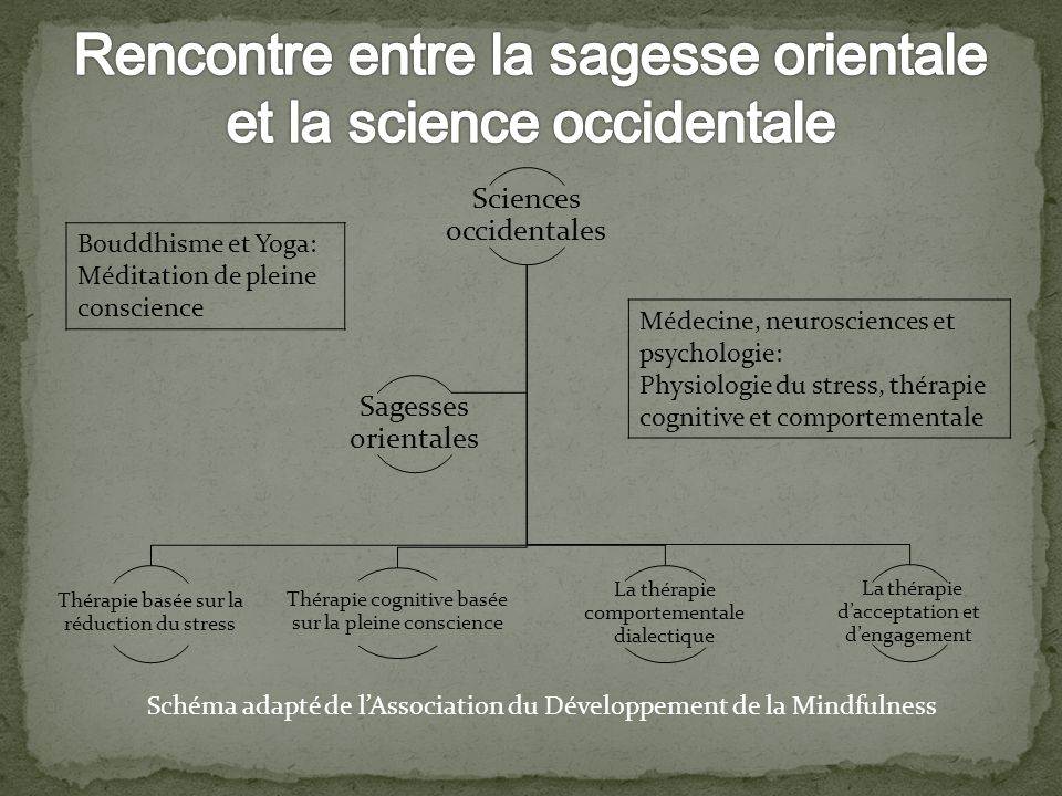 Rencontre entre la sagesse orientale et la science occidentale