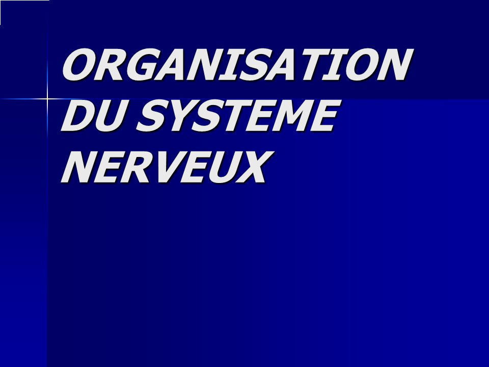 ORGANISATION DU SYSTEME NERVEUX