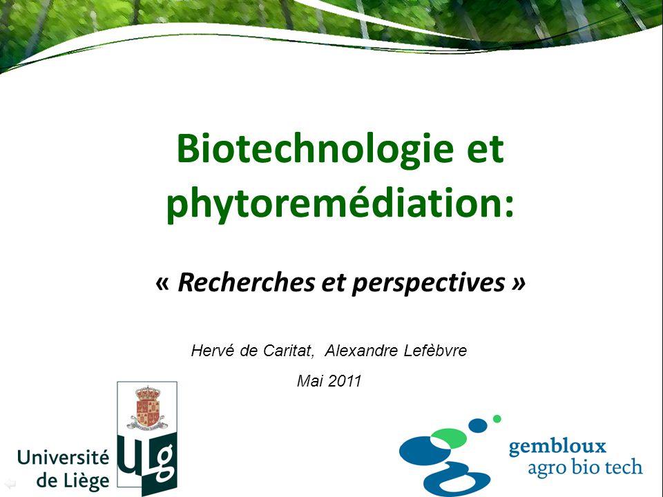 Biotechnologie et phytoremédiation: « Recherches et perspectives »