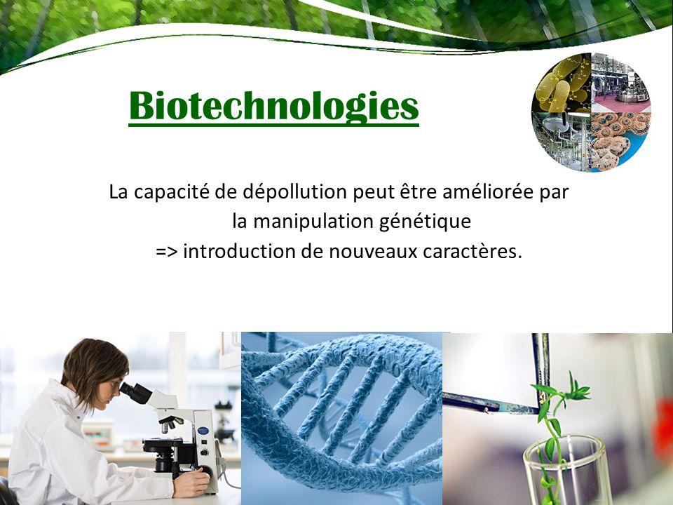 Biotechnologies La capacité de dépollution peut être améliorée par