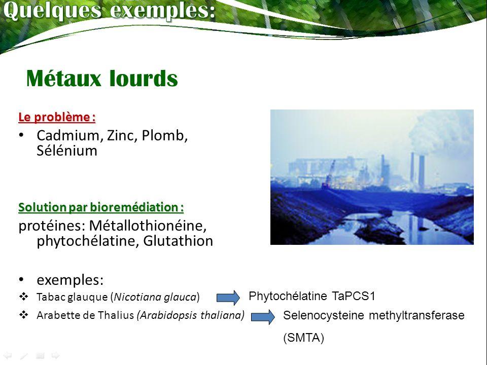 Quelques exemples: Métaux lourds Cadmium, Zinc, Plomb, Sélénium