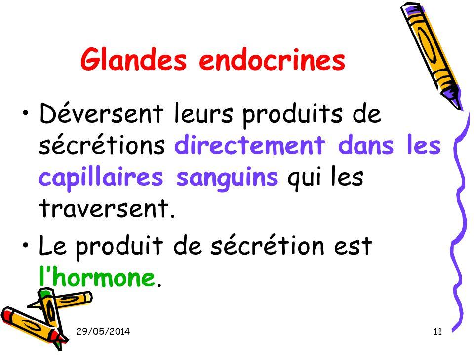 Glandes endocrines Déversent leurs produits de sécrétions directement dans les capillaires sanguins qui les traversent.