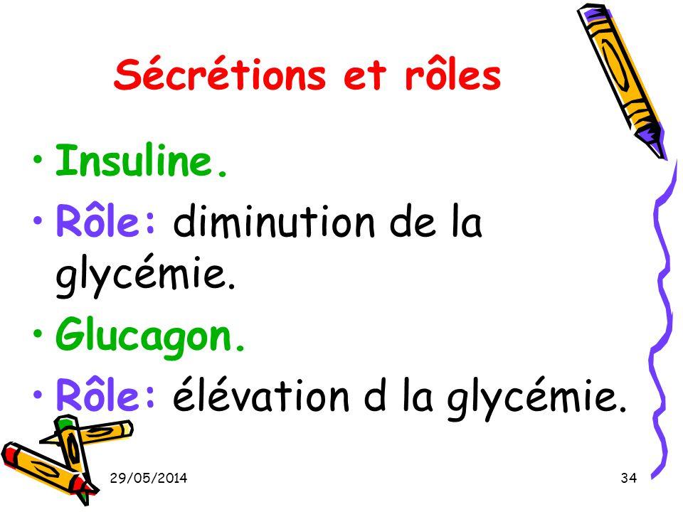 Rôle: diminution de la glycémie. Glucagon.