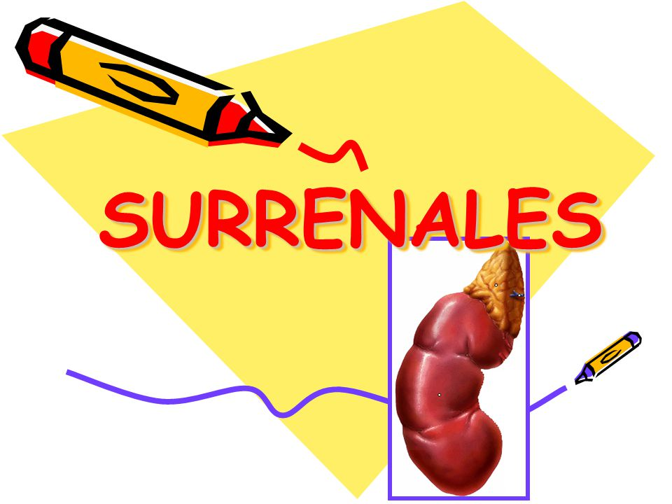 SURRENALES