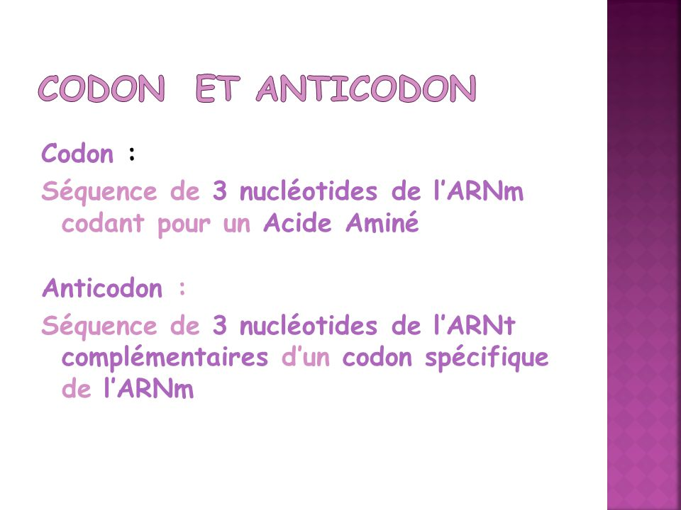 Codon et Anticodon