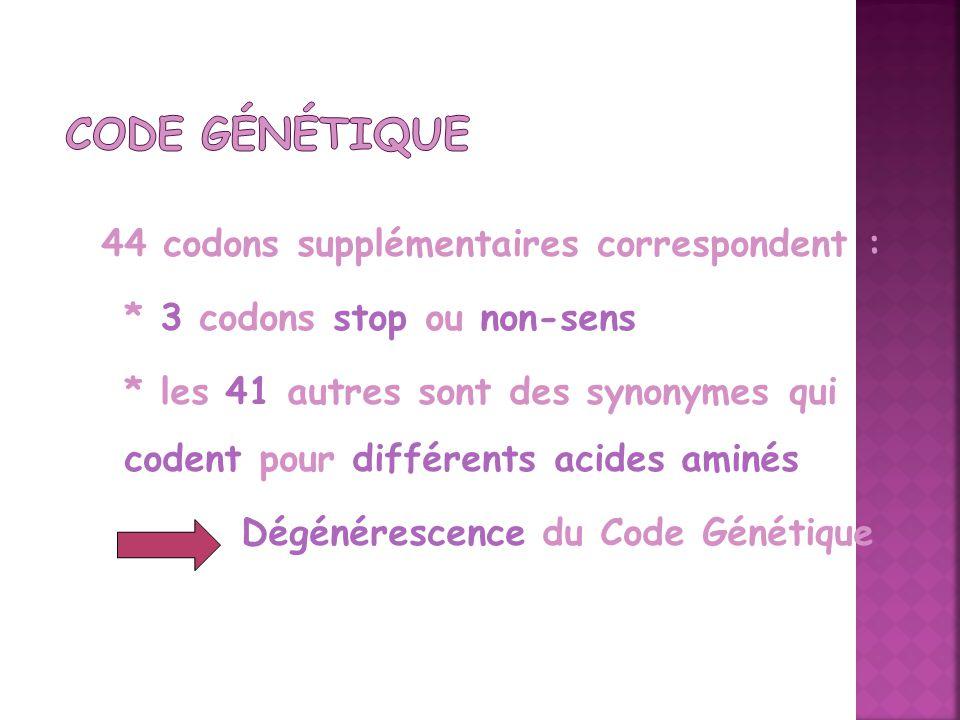 Code Génétique