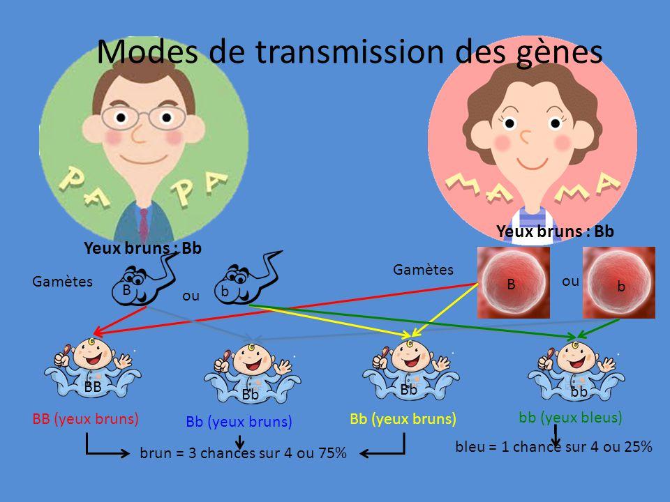 Modes de transmission des gènes