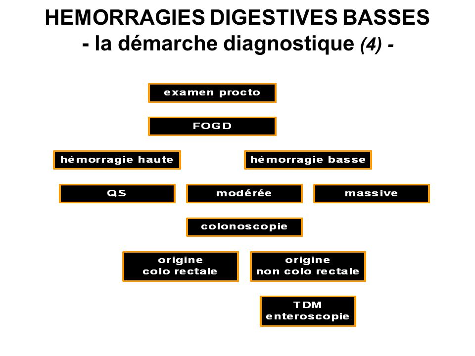 HEMORRAGIES DIGESTIVES BASSES - la démarche diagnostique (4) -