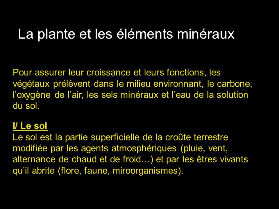 La plante et les éléments minéraux