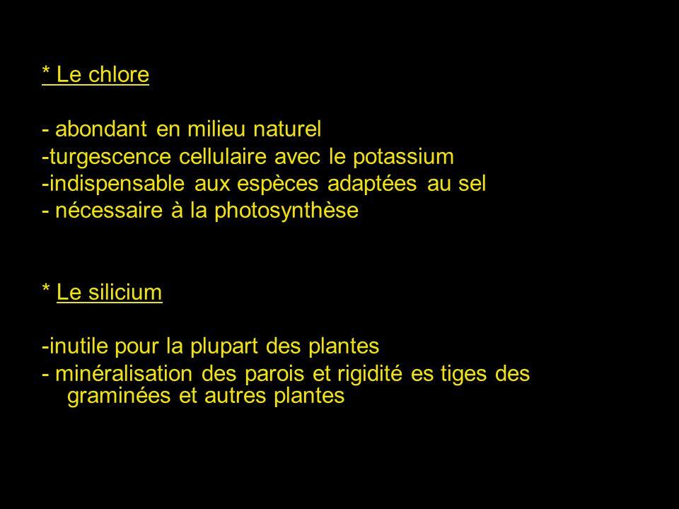 * Le chlore - abondant en milieu naturel. -turgescence cellulaire avec le potassium. -indispensable aux espèces adaptées au sel.