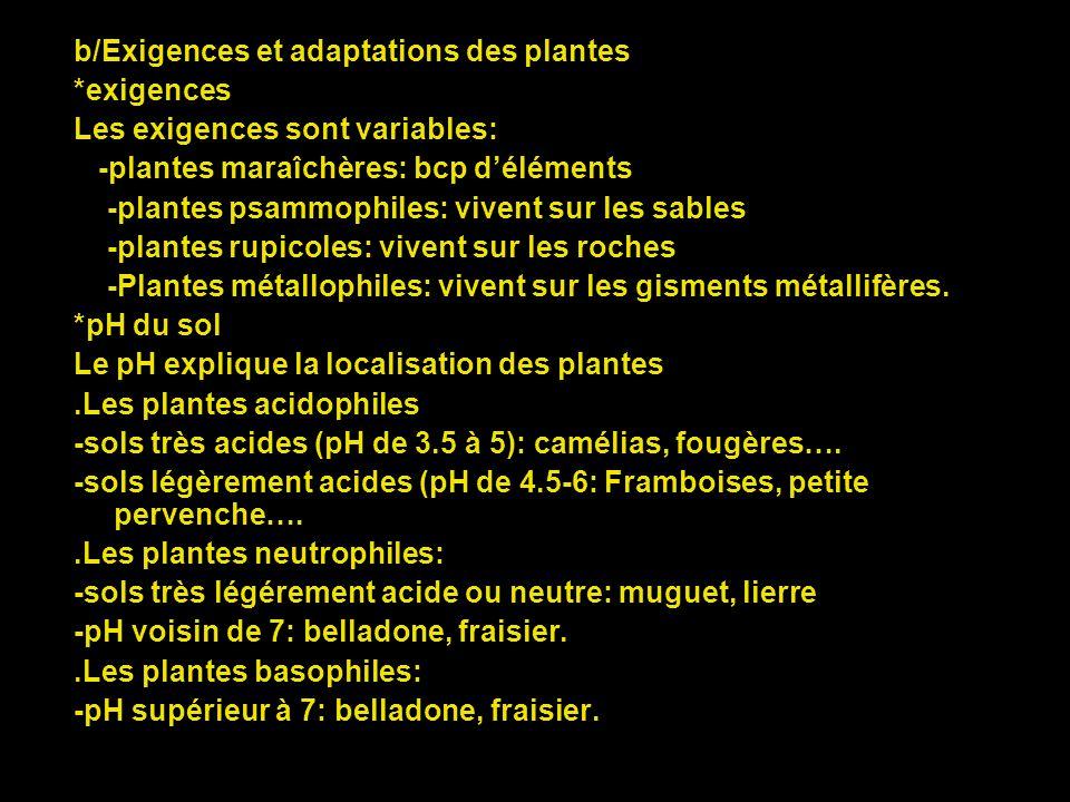 b/Exigences et adaptations des plantes
