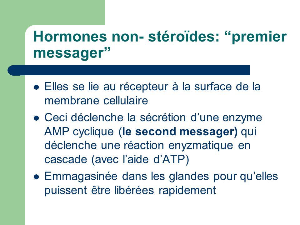 Hormones non- stéroïdes: premier messager