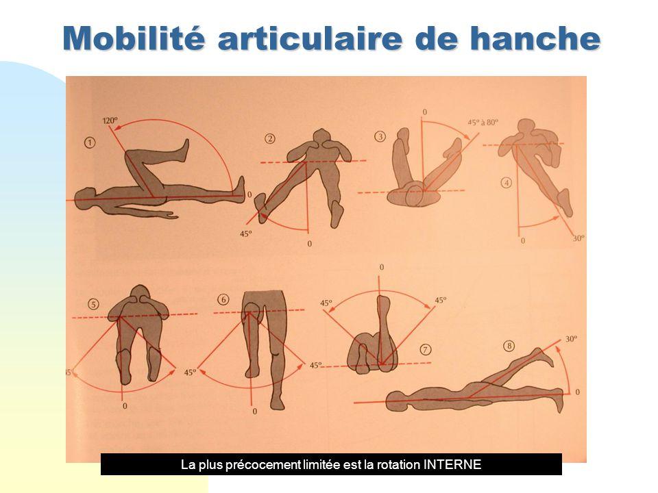 Mobilité articulaire de hanche