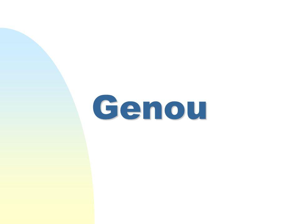 Genou