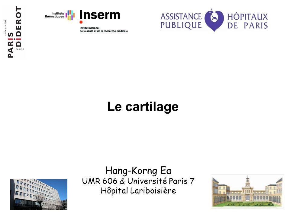 Le cartilage Hang-Korng Ea UMR 606 & Université Paris 7