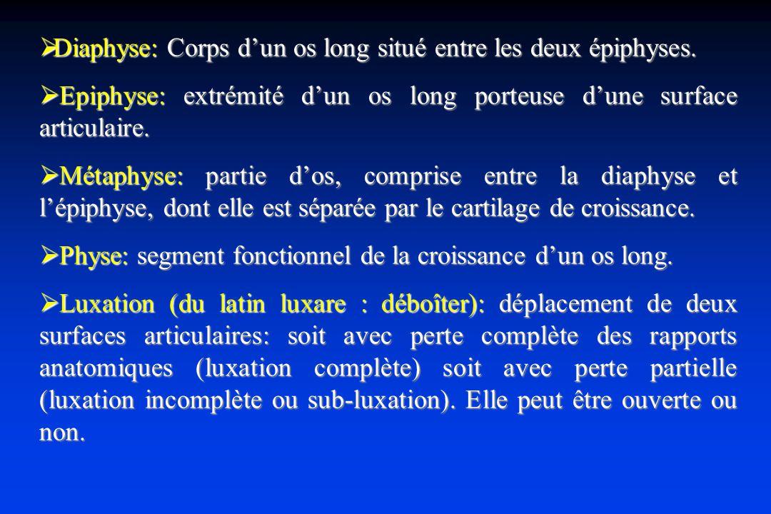 Diaphyse: Corps d'un os long situé entre les deux épiphyses.