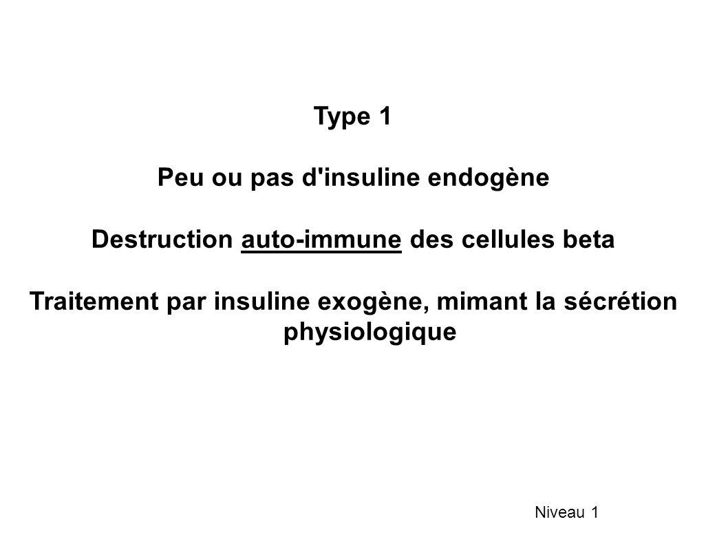 Peu ou pas d insuline endogène