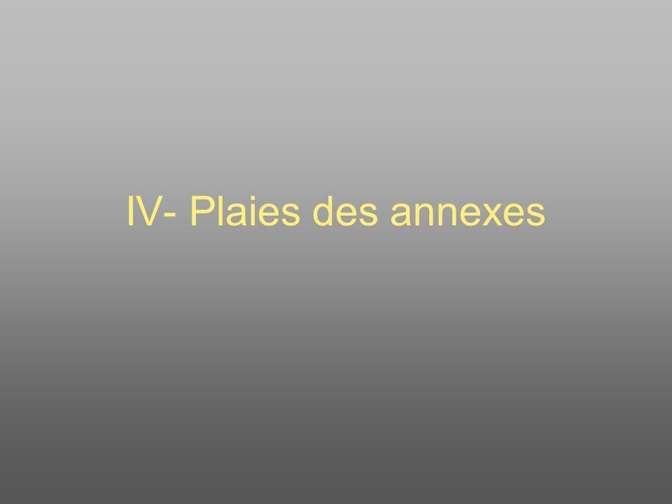 IV- Plaies des annexes
