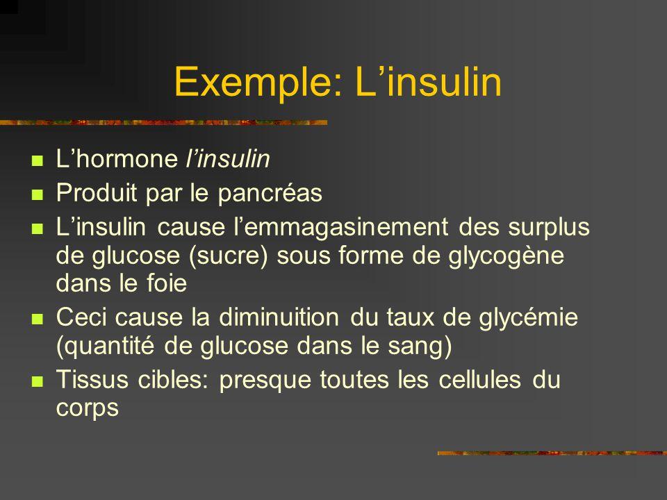 Exemple: L'insulin L'hormone l'insulin Produit par le pancréas