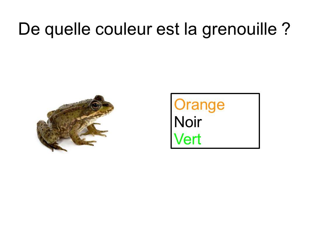 De quelle couleur est la grenouille