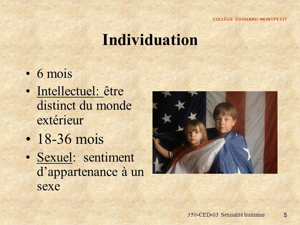 Individuation 18-36 mois 6 mois