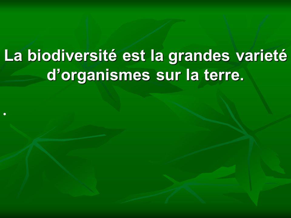La biodiversité est la grandes varieté d'organismes sur la terre.