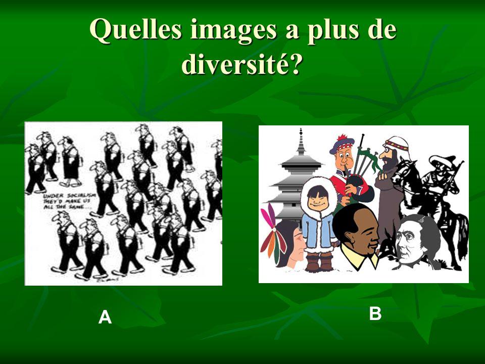 Quelles images a plus de diversité