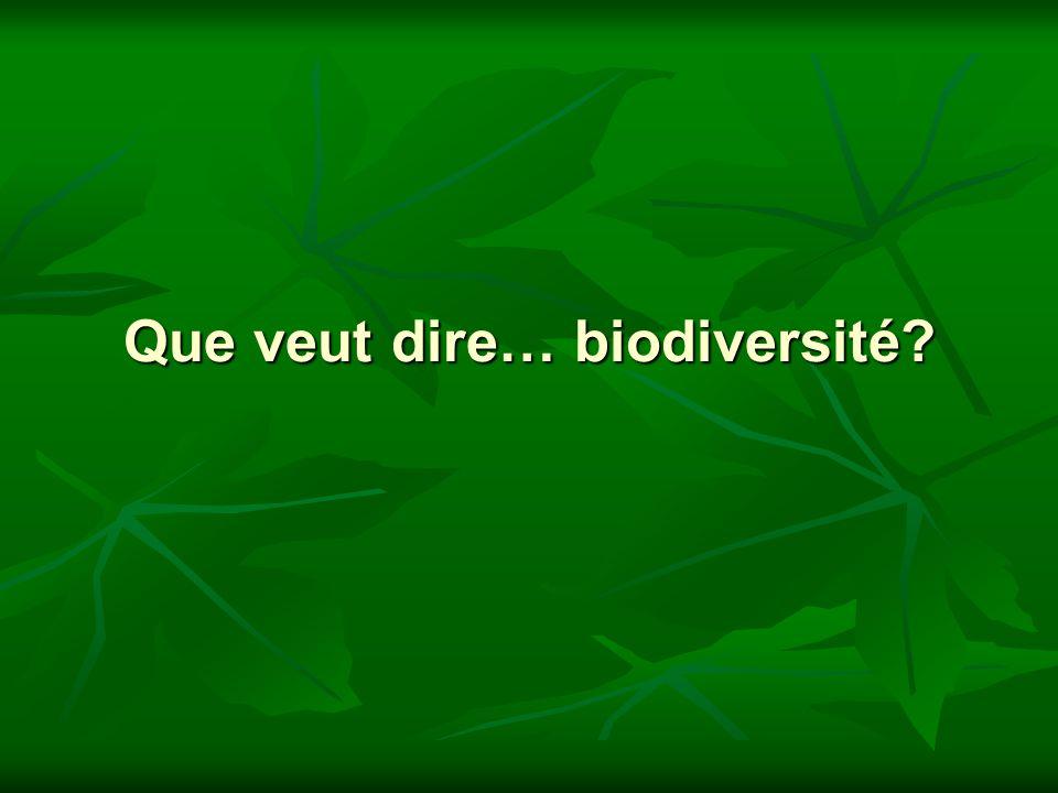 Que veut dire… biodiversité