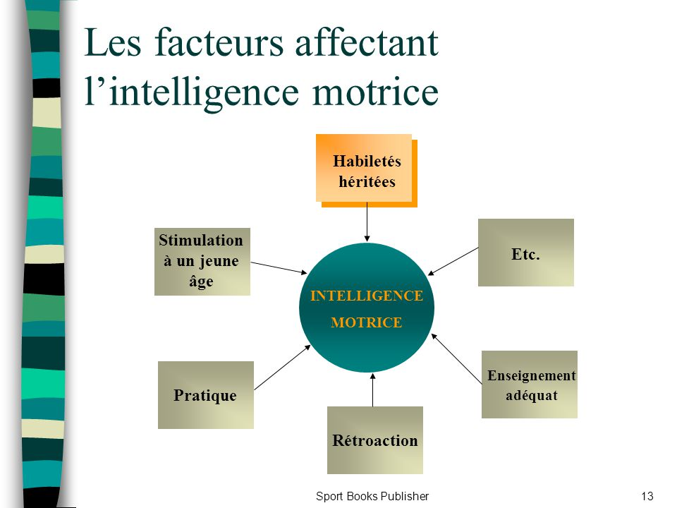 Les facteurs affectant l'intelligence motrice