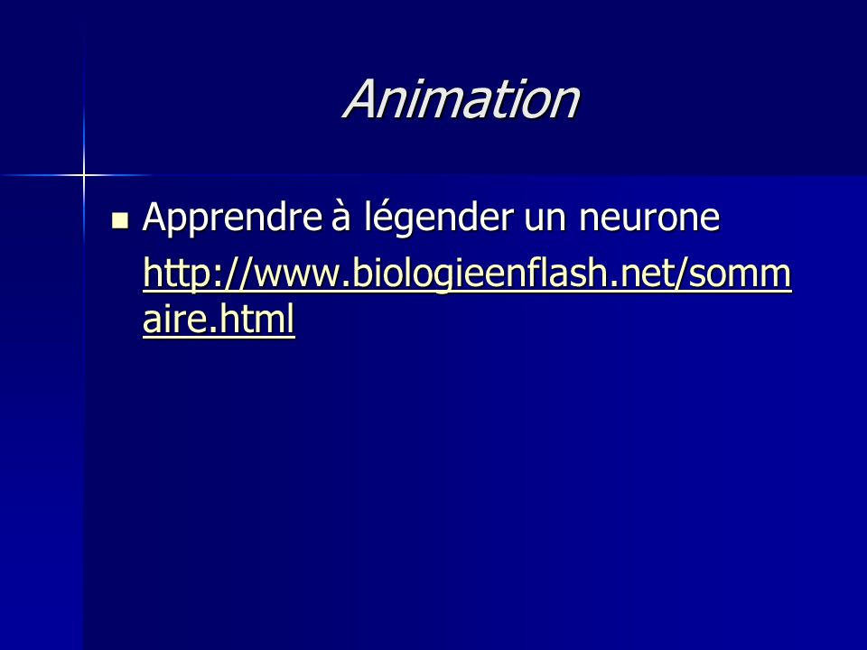 Animation Apprendre à légender un neurone