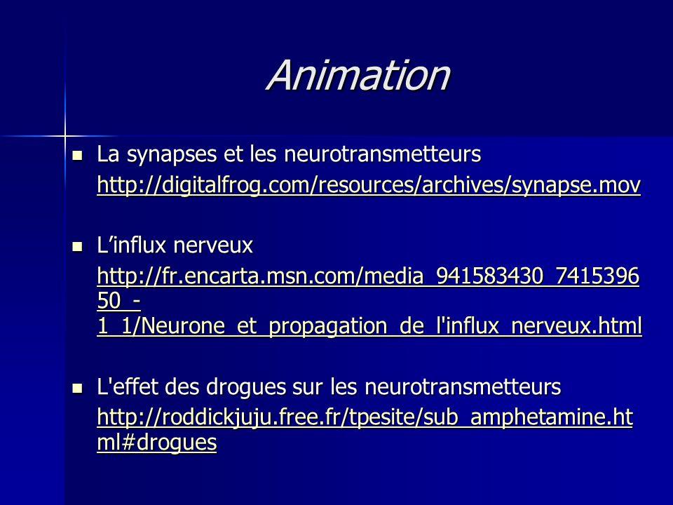 Animation La synapses et les neurotransmetteurs