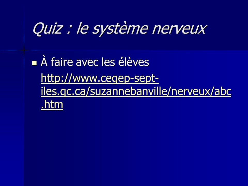 Quiz : le système nerveux