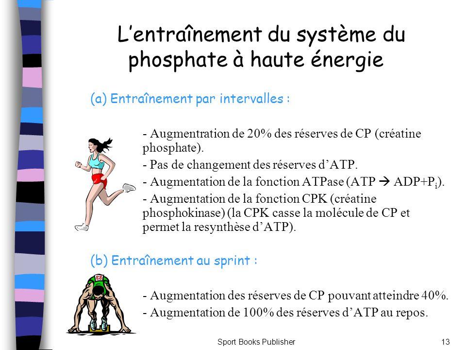 L'entraînement du système du phosphate à haute énergie