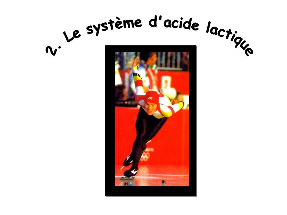2. Le système d acide lactique