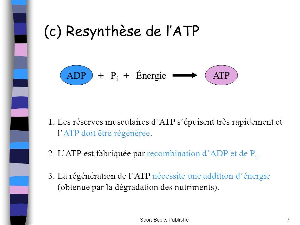 (c) Resynthèse de l'ATP