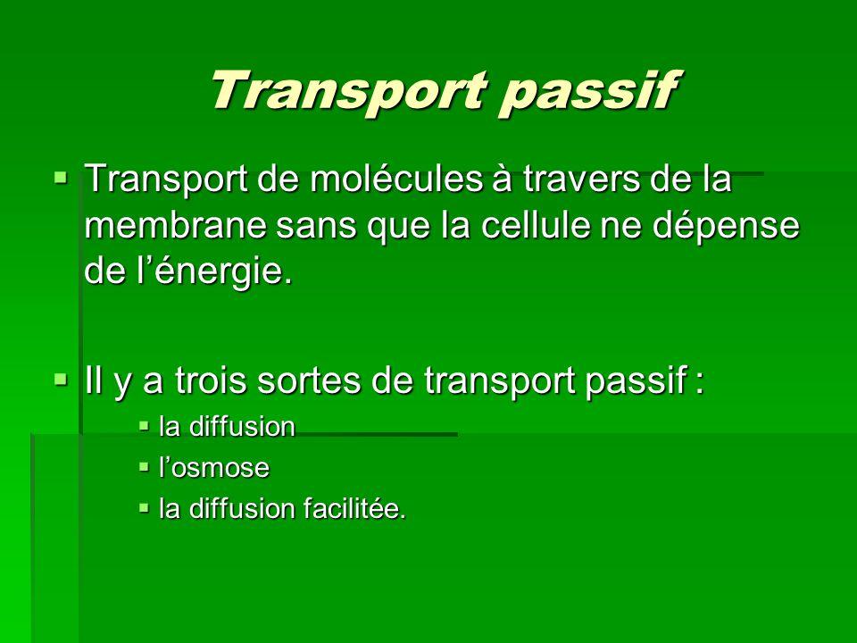 Transport passif Transport de molécules à travers de la membrane sans que la cellule ne dépense de l'énergie.