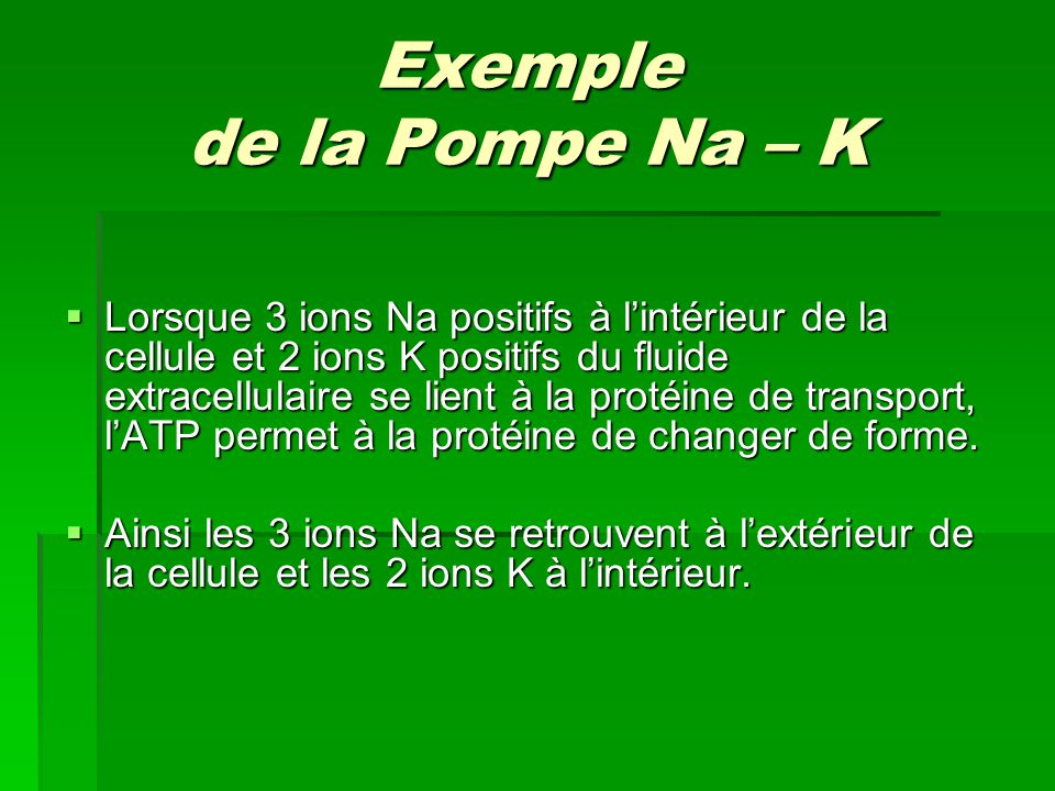 Exemple de la Pompe Na – K