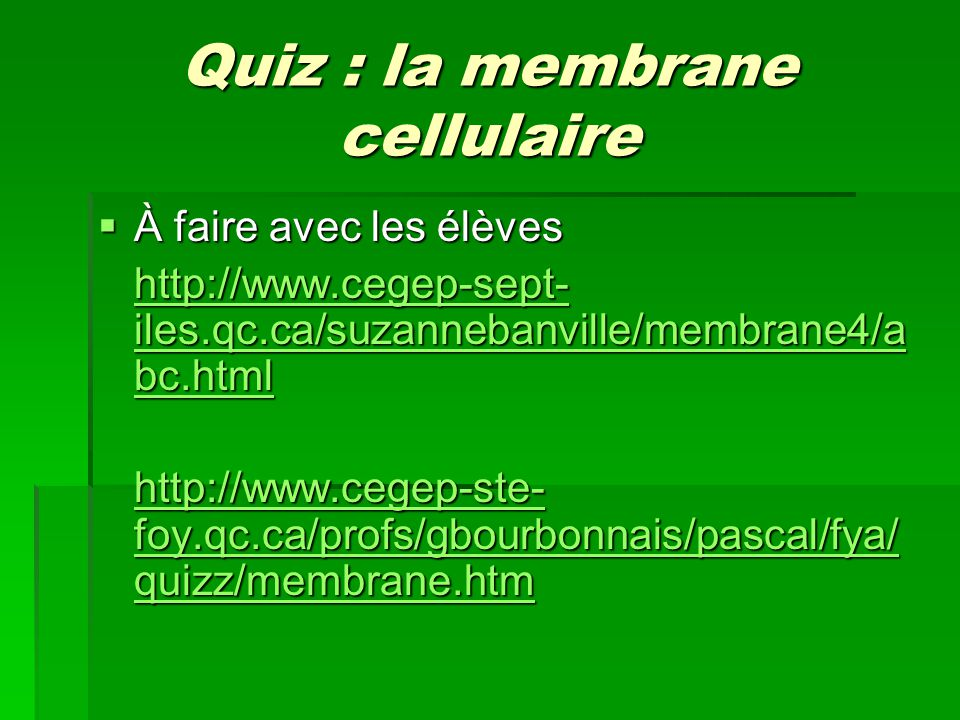 Quiz : la membrane cellulaire